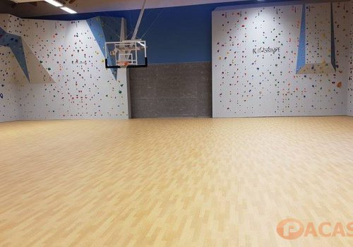revetement-sol-taraflex-sport-m-performance-confort-gerflor-gymnase-college-jean-giono-marseille